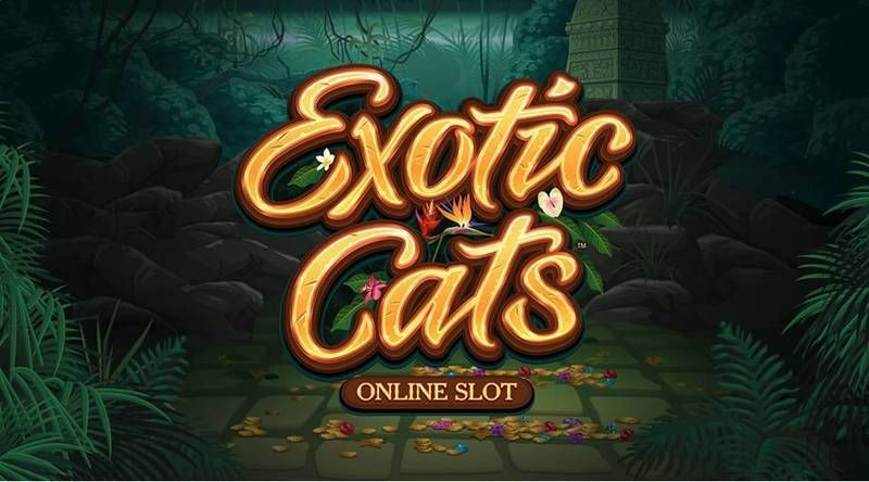 Exotic Cats Microgaming Info