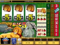 Big Five Microgaming Slot Slot Reels