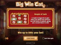 Big Win Cat Play'n GO Slot