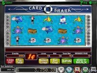 Card Shark RTG Slot Slot Reels