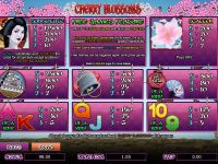 Cherry Blossoms Amaya Slot Info