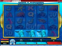 Dolphin Coast Microgaming Slot Bonus 1
