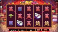 Fortune Girl Microgaming Slot Slot Reels