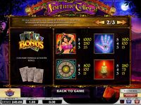 Fortune Teller Play'n GO Slot Info