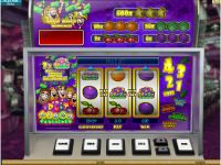 Fruit Bingo Microgaming Slot Slot Reels