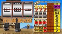 High Noon Microgaming Slot Slot Reels