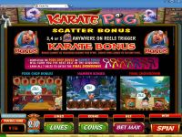 Karate Pig Microgaming Slot Bonus 1