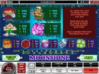 Moonshine Microgaming Slot Info