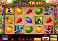 Ninja Fruits Play'n GO Slot Slot Reels