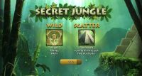 Secret Jungle RTG Slot Info