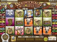 Western Wildness Rival Slot Slot Reels