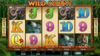 Wild Orient Microgaming Slot main