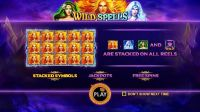 Wild Spells Pragmatic Play Slot Info