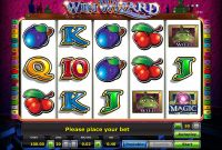Win Wizard Novomatic Slot Slot Reels
