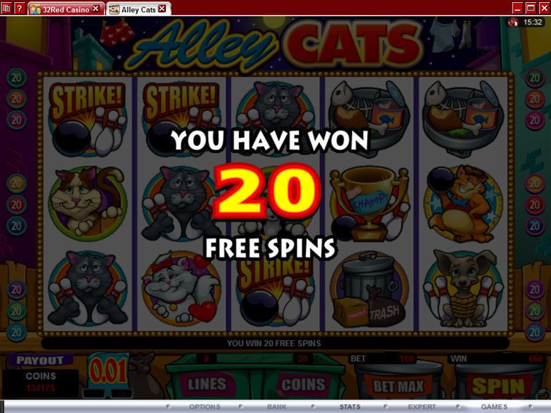 Alley Cats Microgaming Slot Bonus 1