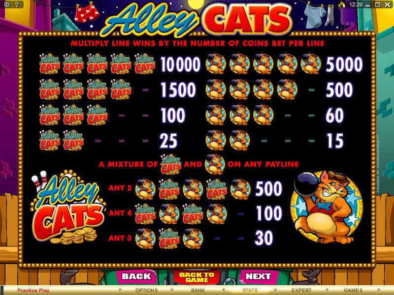 Alley Cats Microgaming Slot Info