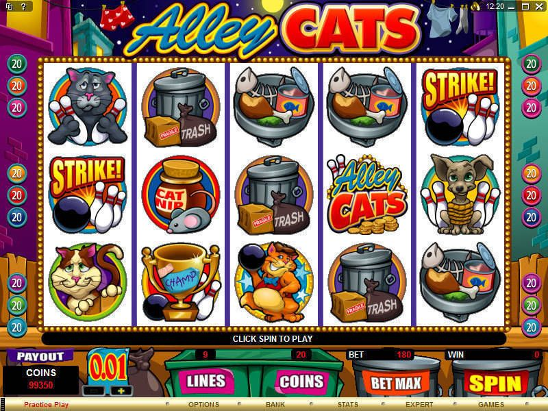 Alley Cats Microgaming Slot Slot Reels