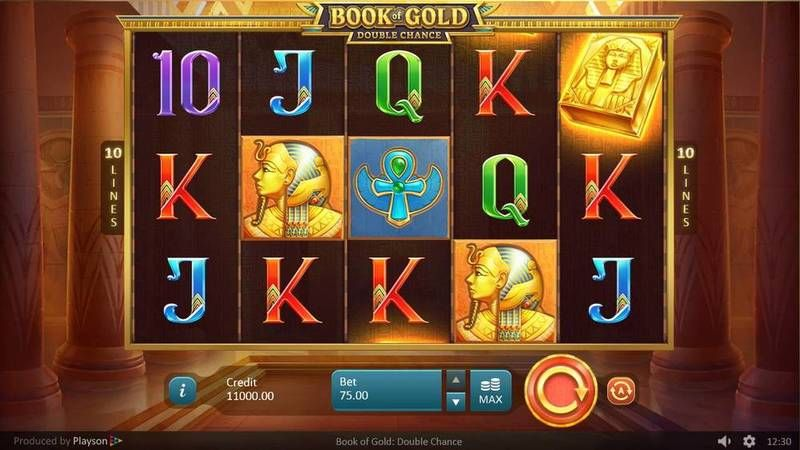 Book of Gold: Double Chance Playsoft Slot Main