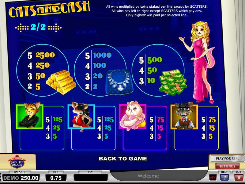 Cats & Cash Play'n GO Slot Info